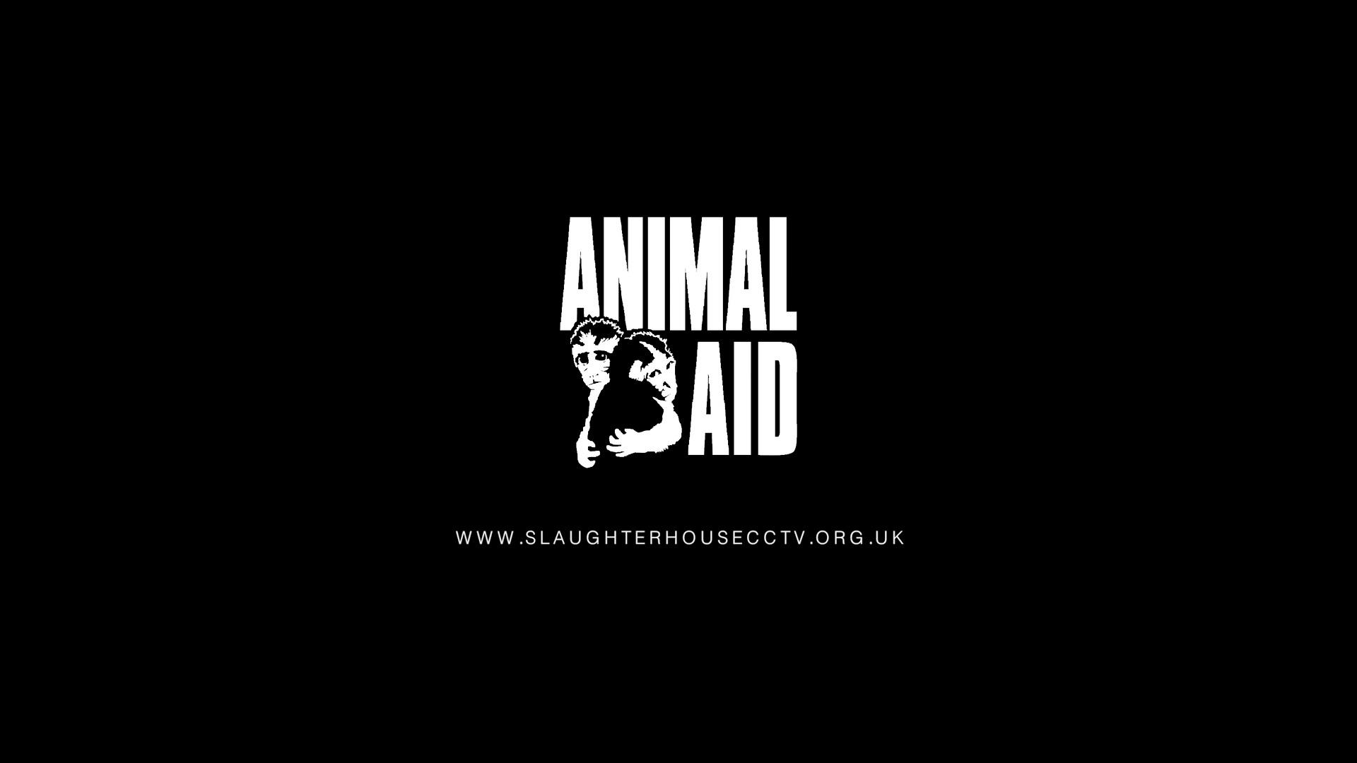 ANIMAL_AID_CCTV